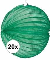 20 keer lampionnen groen 0 2 meter
