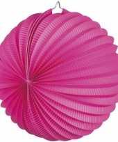 Lampion fuchsia roze 0 2 meter